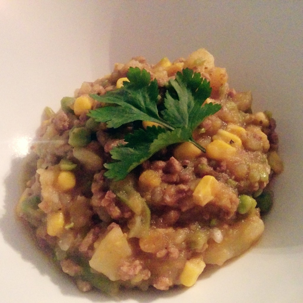 charquicanchileanstew (7)