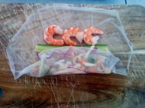 ricepaperrolls (10)
